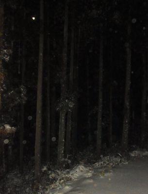 大雪11.jpg