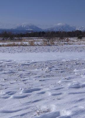 大雪5.jpg