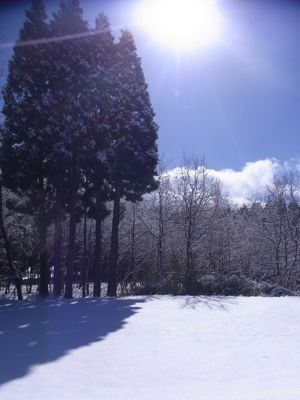 大雪9.jpg