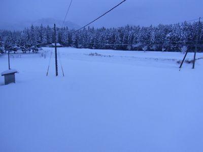 豪雪5.jpg