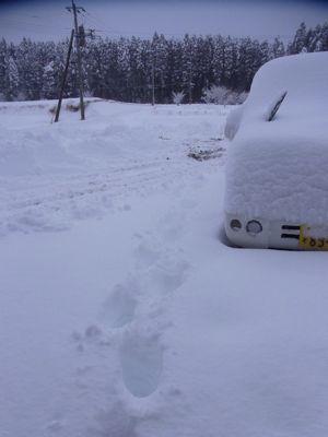 豪雪8.jpg