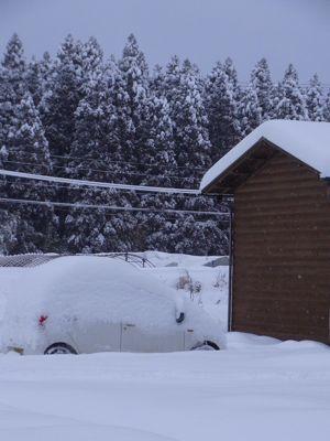豪雪9.jpg